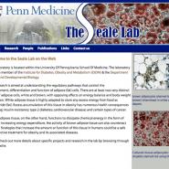 The Seale Lab